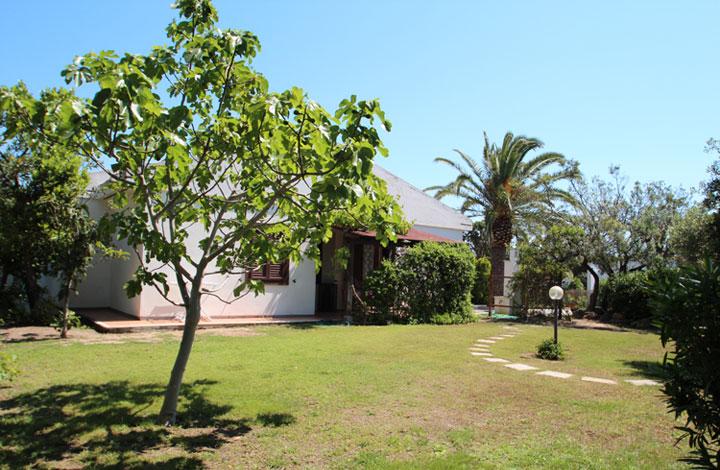 Casa Saiu
